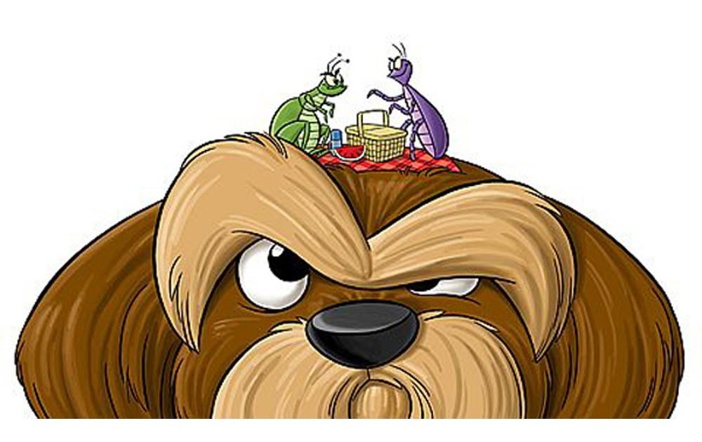 Блохи и клещи у собак, как лечить!