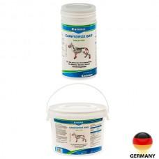 Petvital GAG Forte\ГАГ Кангидрокс витамины для собак